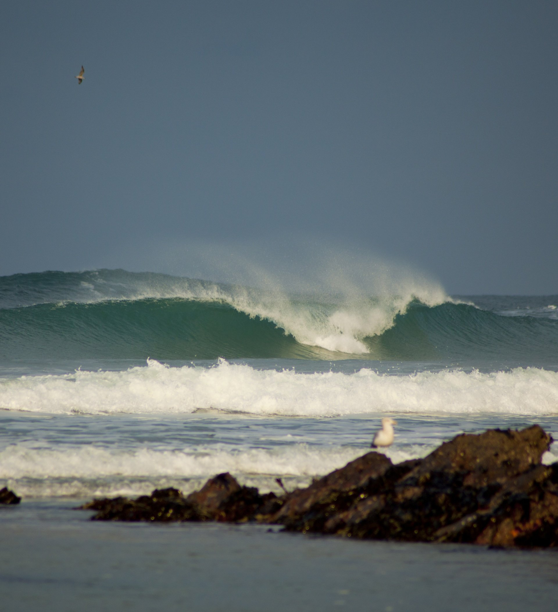 PT Creative's photo of Newquay - Fistral North