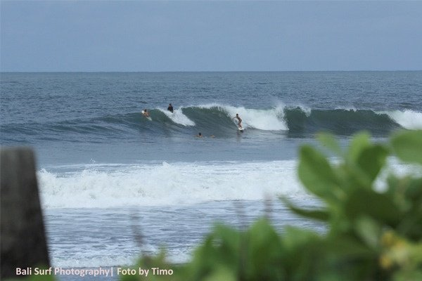 Timo Pramulya's photo of Canggu