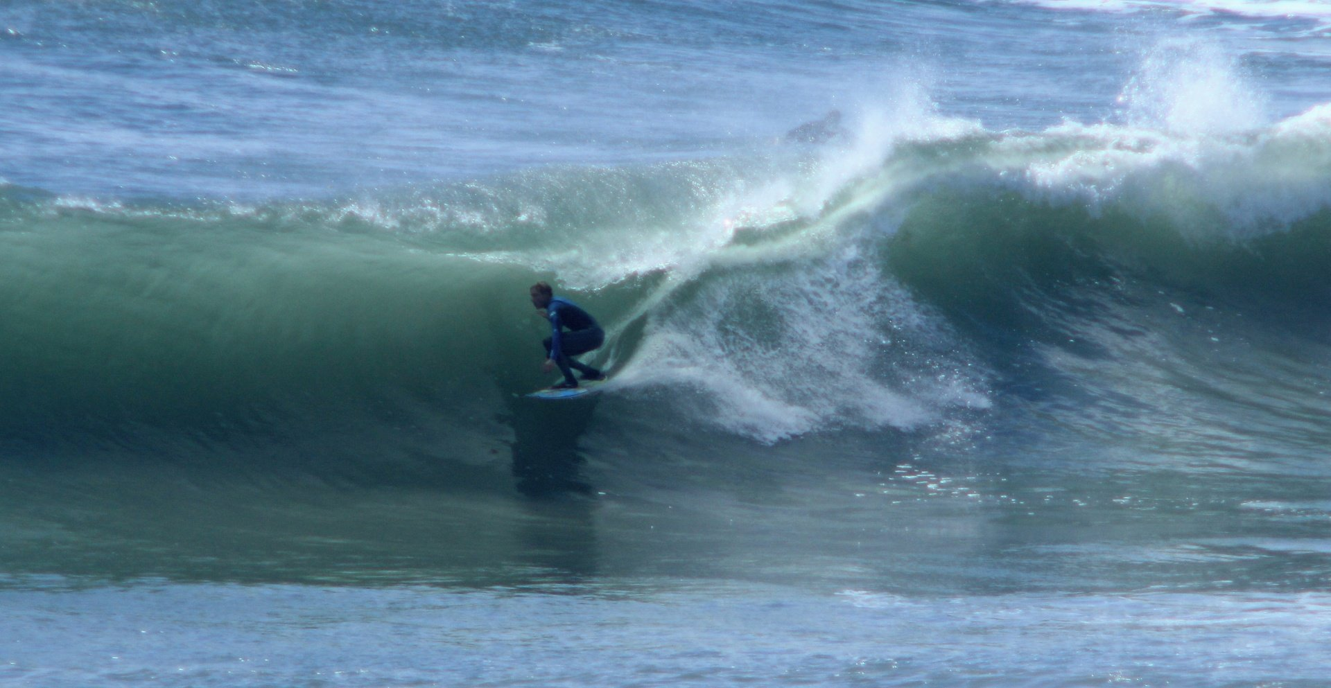 pablacity's photo of Swamis