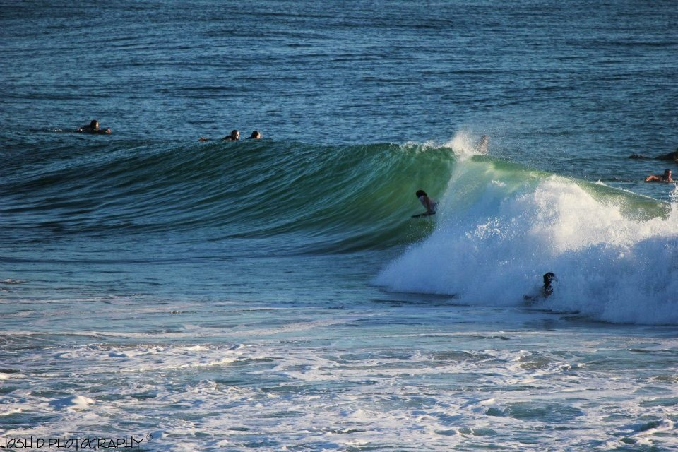 user237188's photo of Burleigh Heads