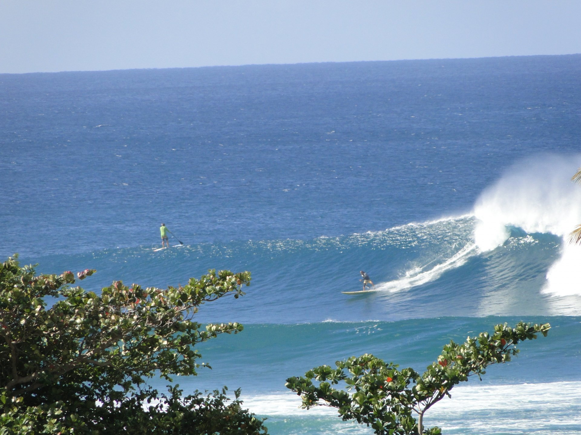 Paul Collins's photo of Little Malibu (Rincon)
