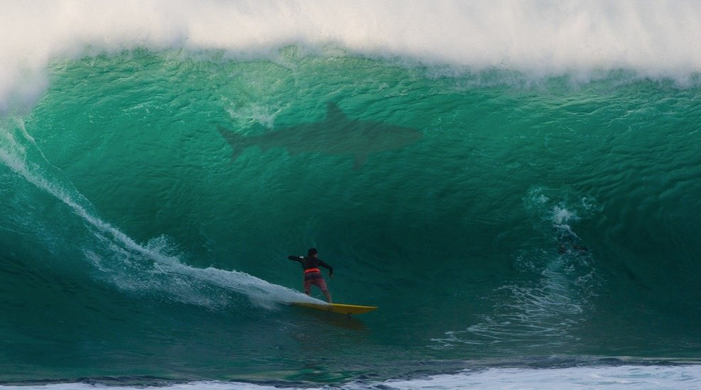 Greg Noll is a god's photo of Pipeline & Backdoor