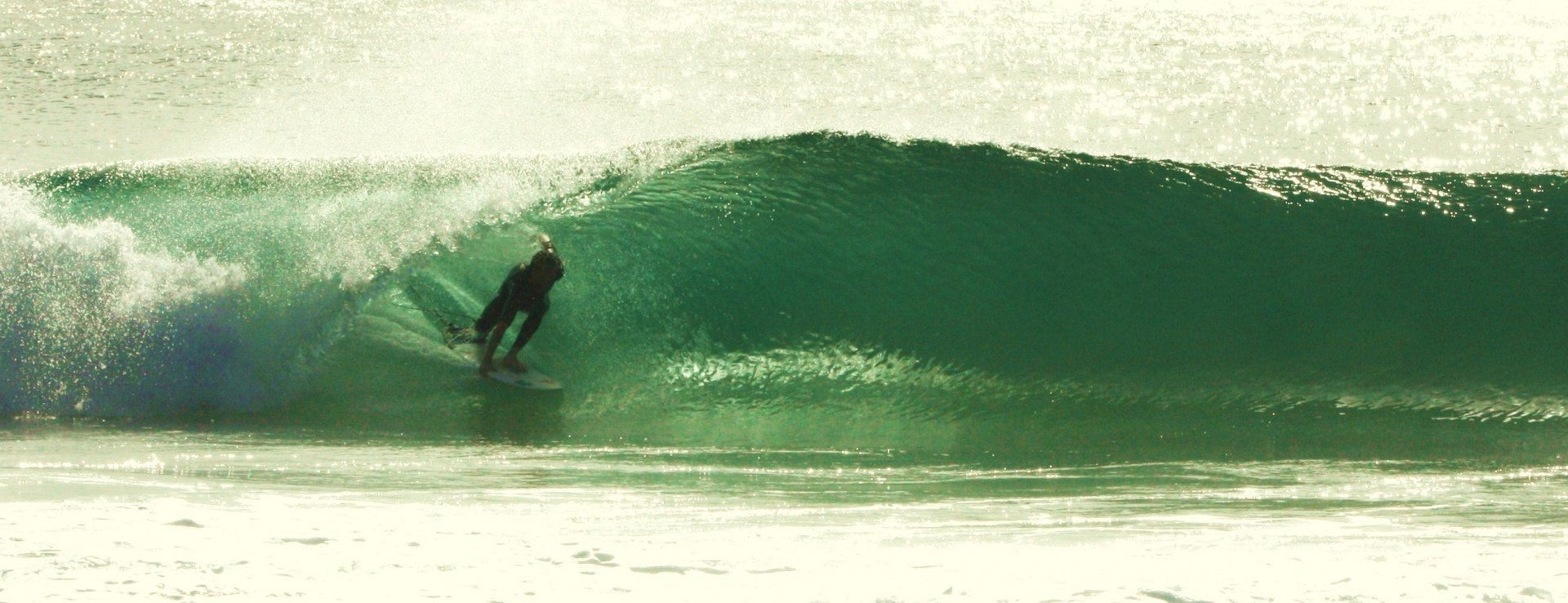 rhys olivey's photo of Forster