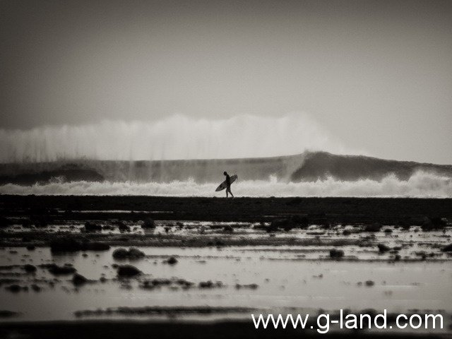 gland-joyo's's photo of G-Land