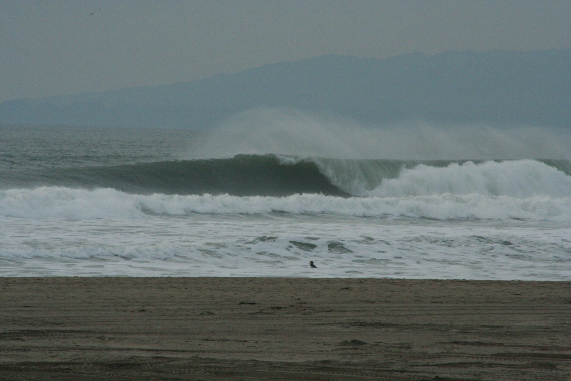 plrose35's photo of Ocean Beach