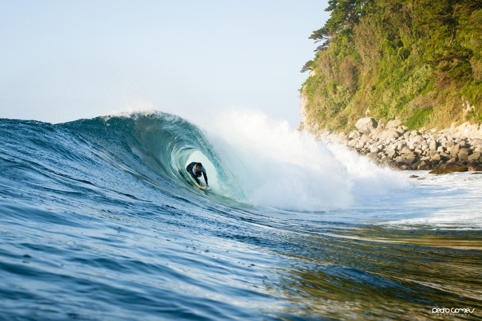 Pedro Gomes's photo of Shonan