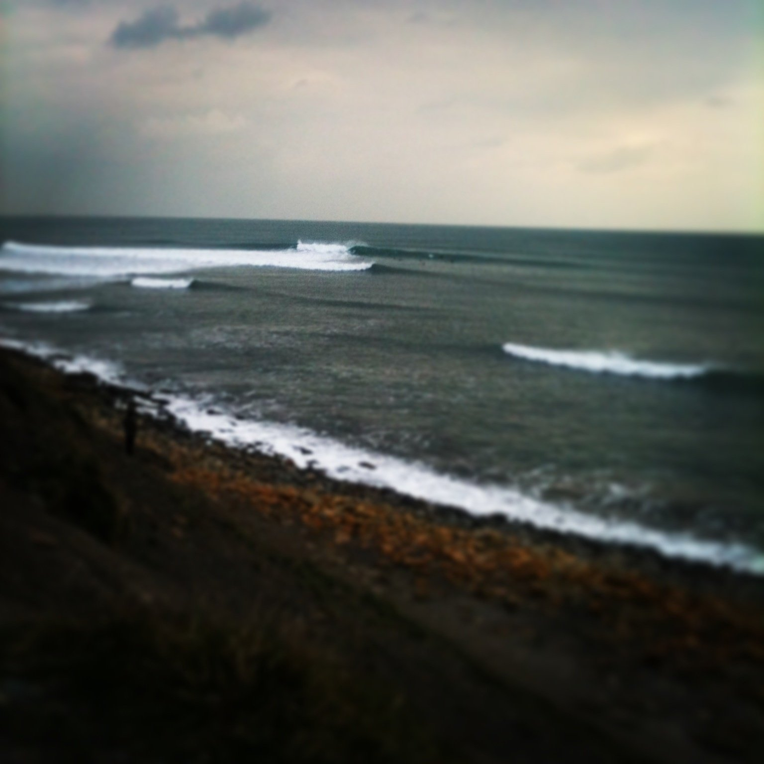 maxmitchell's photo of Kimmeridge