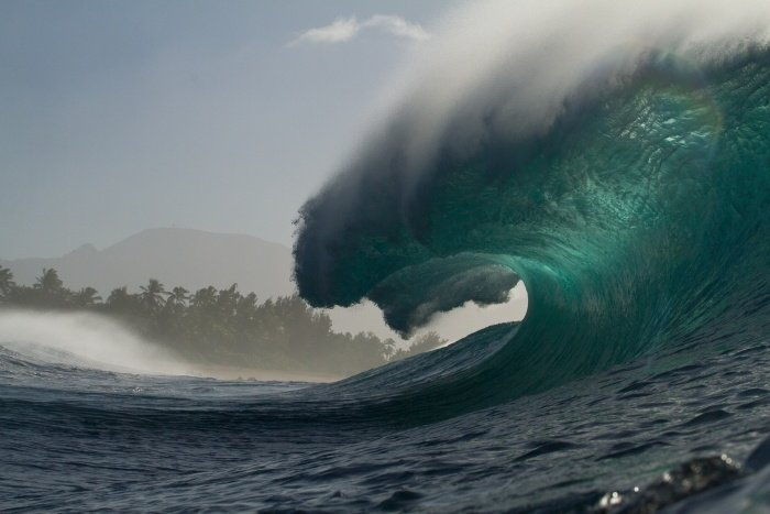 Ant Fox's photo of Pipeline & Backdoor