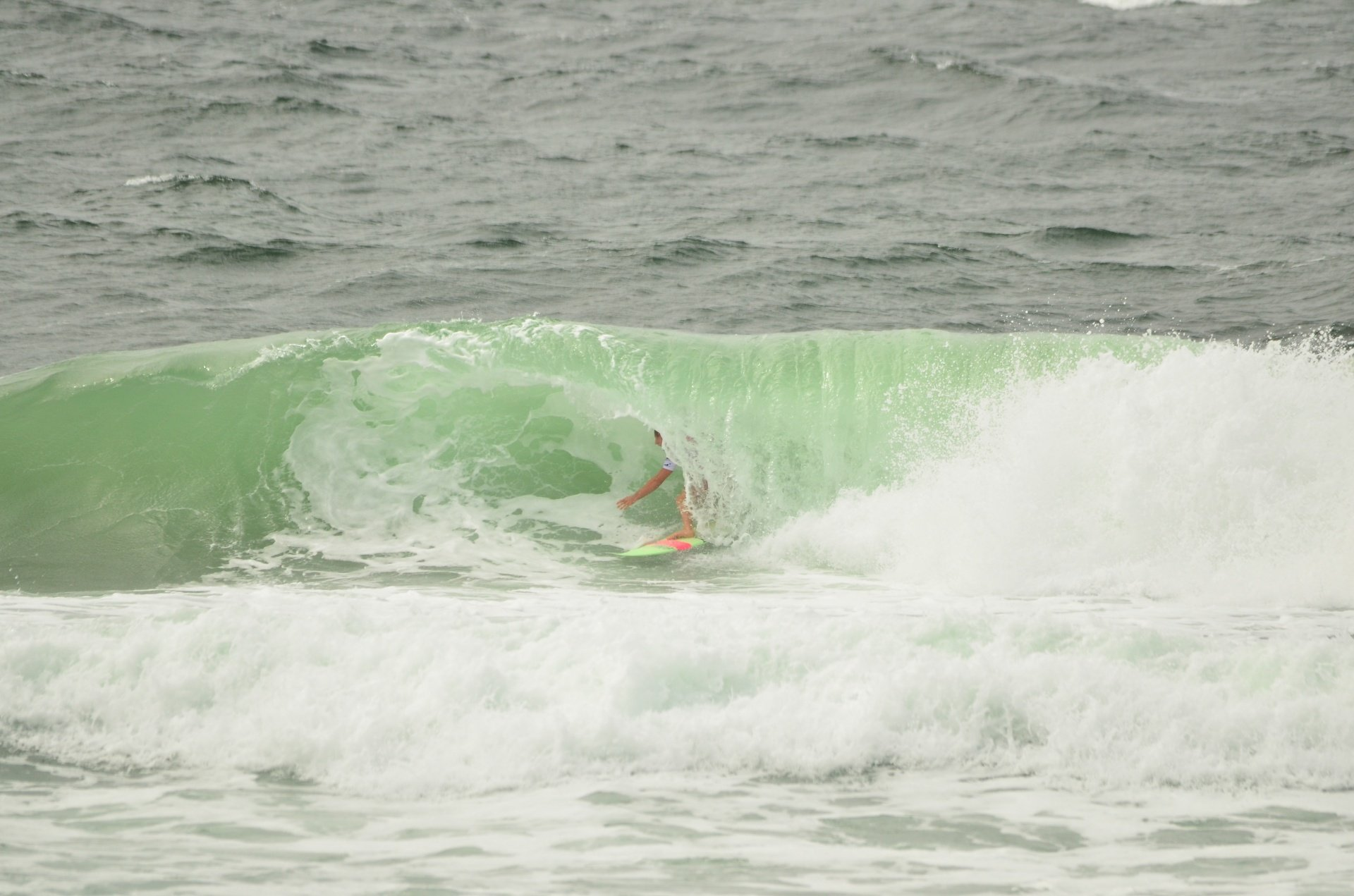 Bertie's photo of Kirra