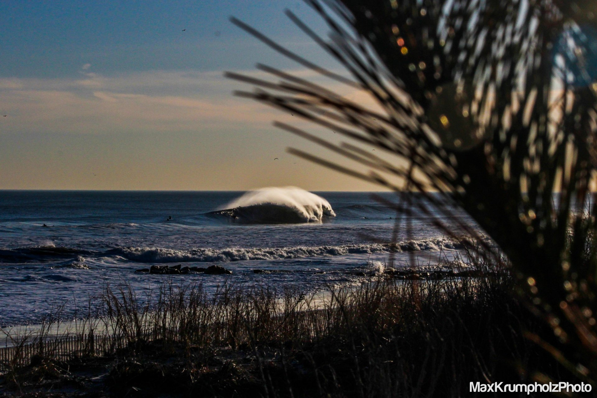 Max Krumpholz's photo of Lido Beach