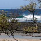 Photo of Playa Negra - Guanacaste