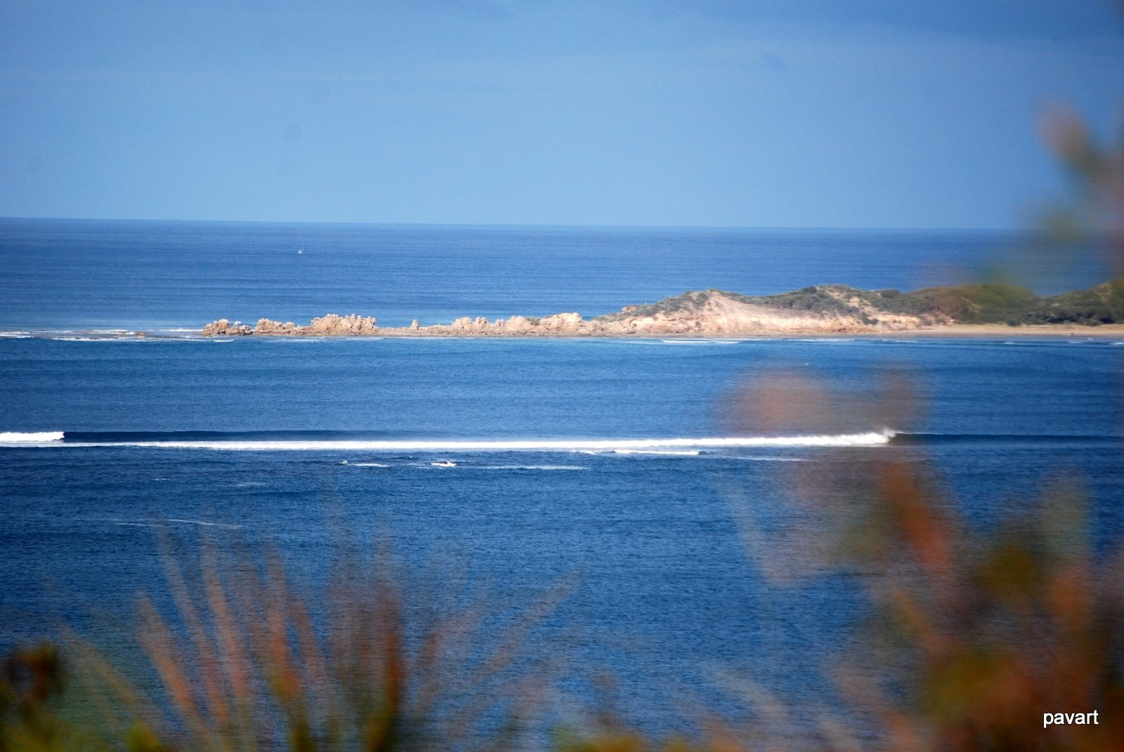 pavart's photo of Anglesea