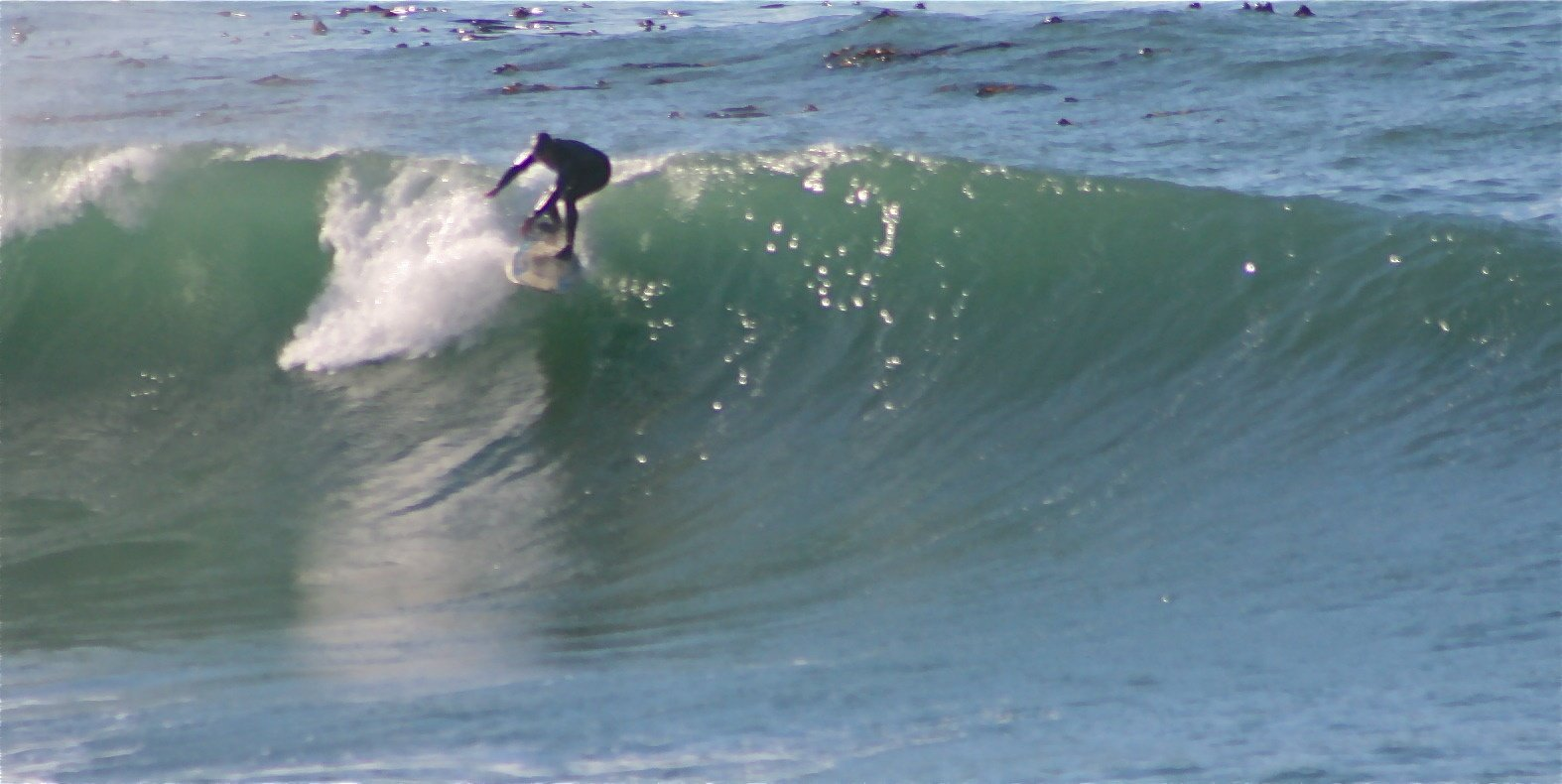 Mike's Surf Shorts's photo of Point Arena