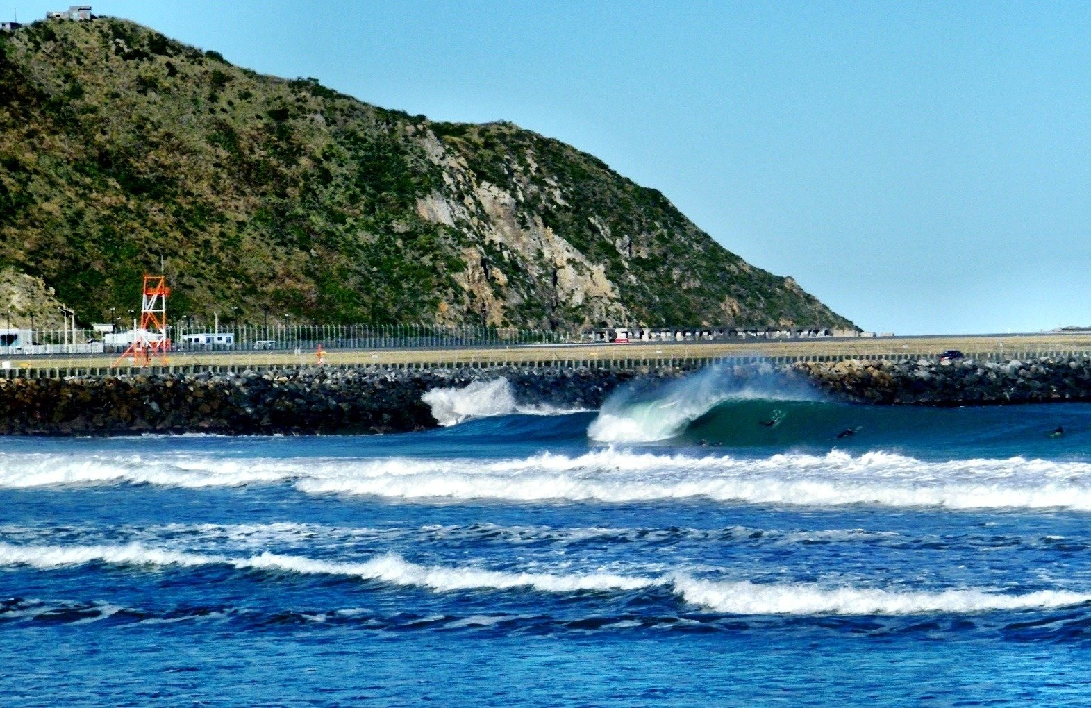 jjnops's photo of Lyall Bay