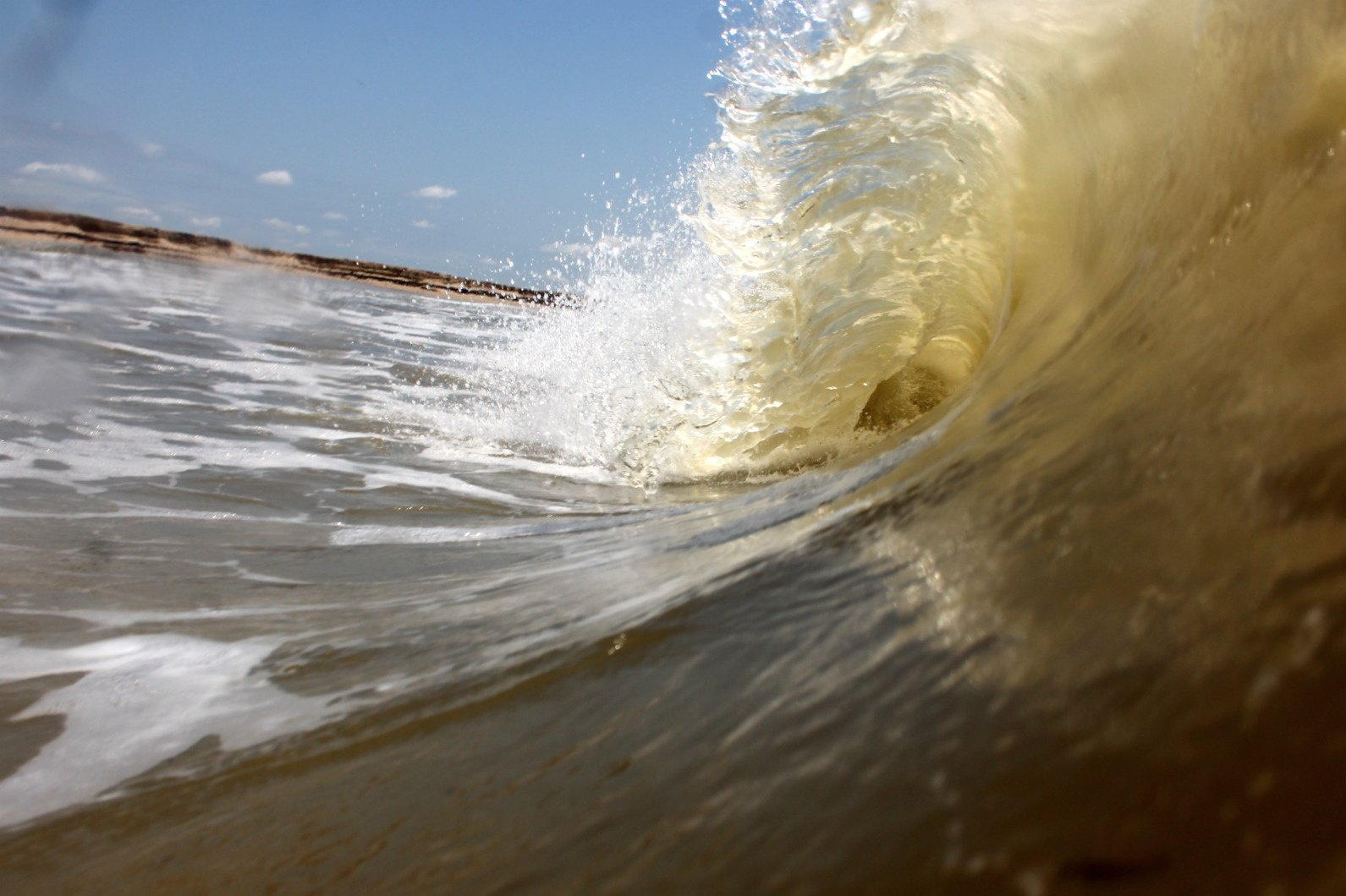 insanedane07's photo of Matagorda