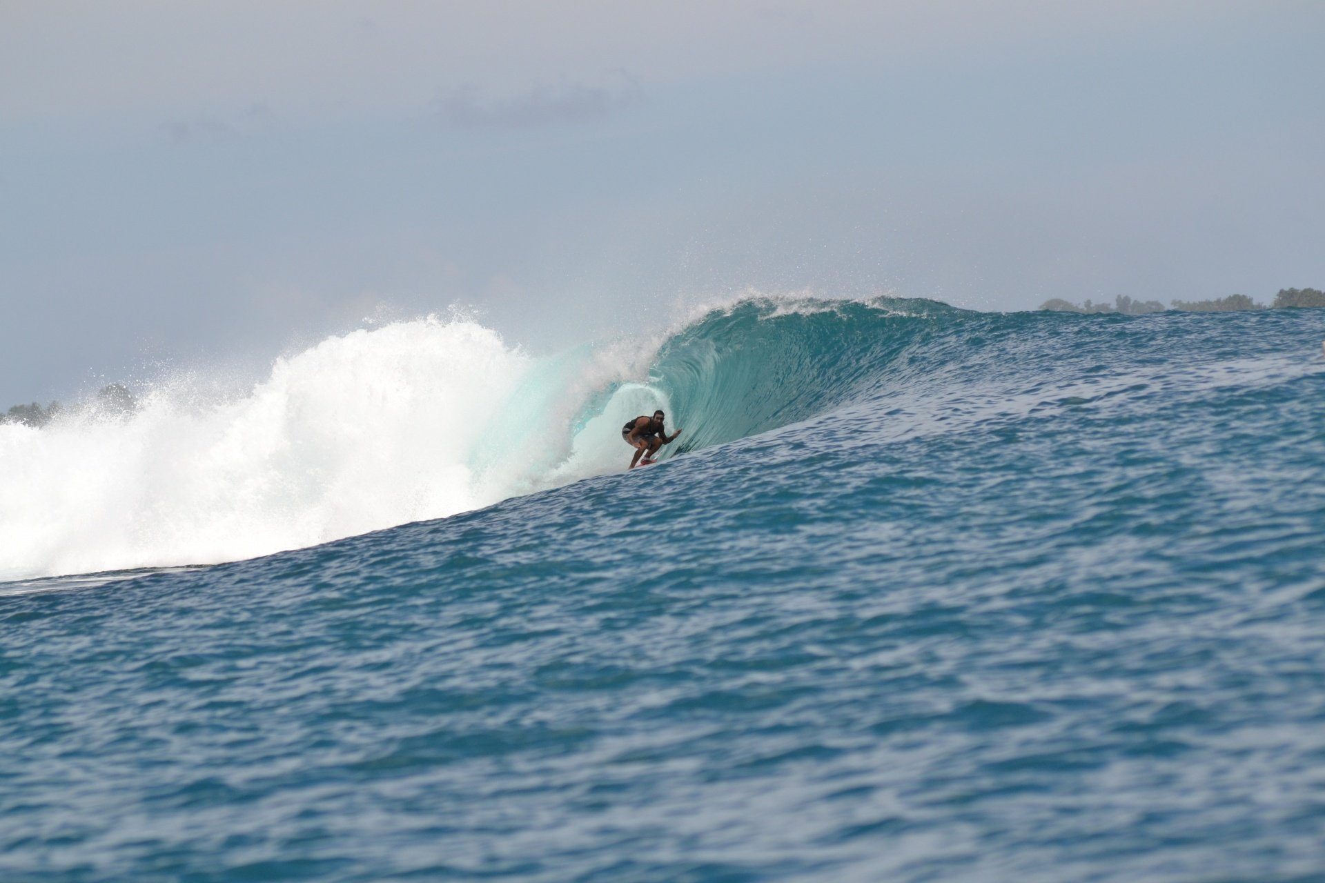 user314676's photo of Hideaways - Mentawai