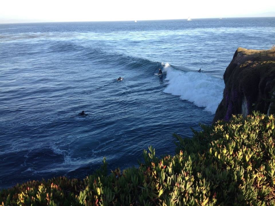 The Lurker's photo of Steamer Lane
