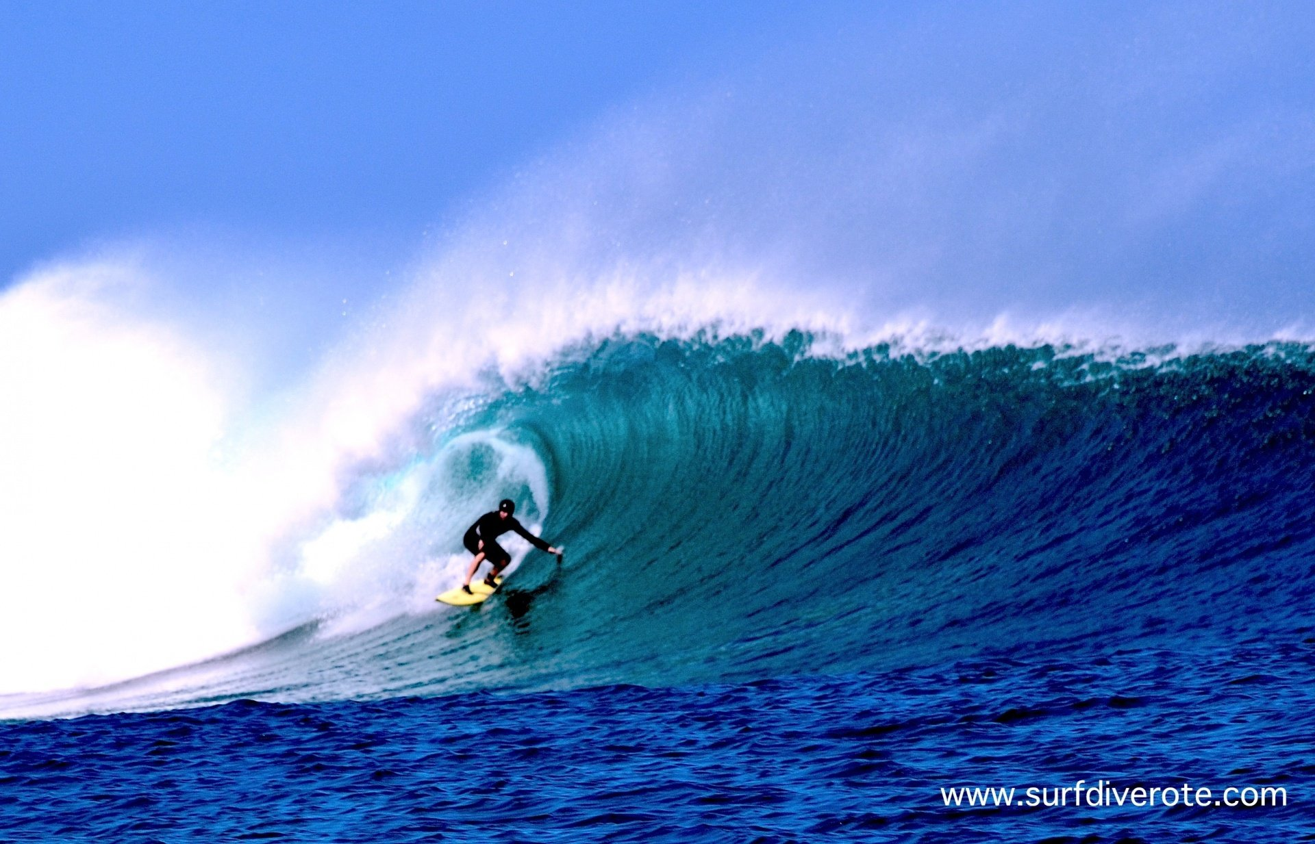 Anugerah Surf & Dive Resort's photo of T-Land