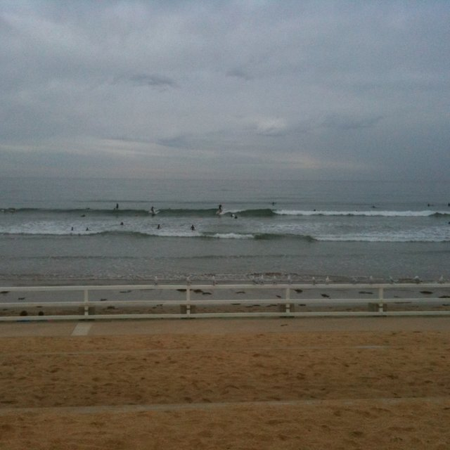Ocean Grove Surf Report, Surf Forecast and Live Surf Webcams
