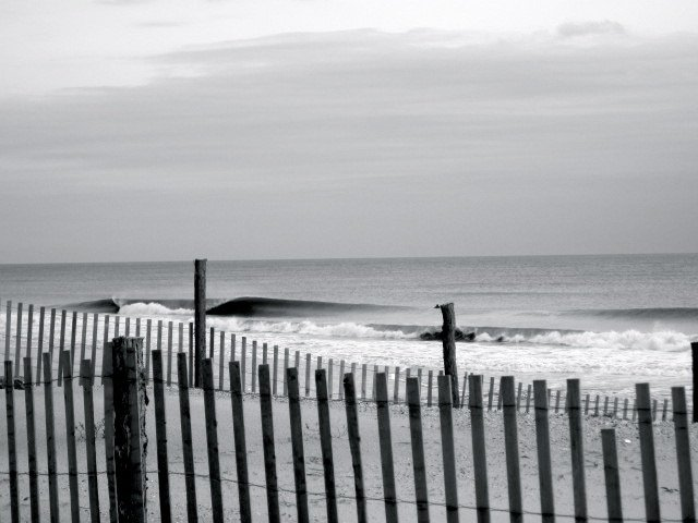 AndyHaumersen's photo of Surf City