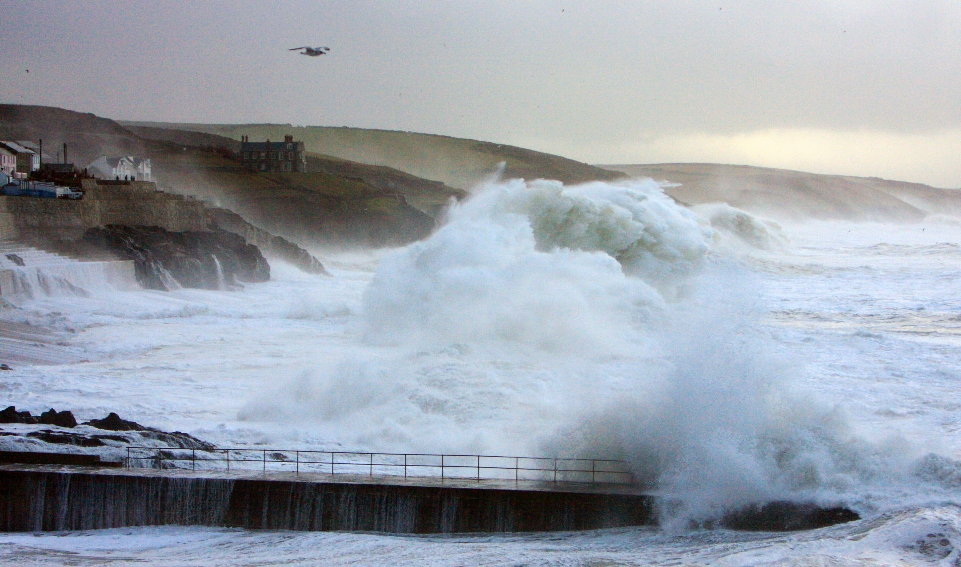 petesimmo's photo of Porthleven