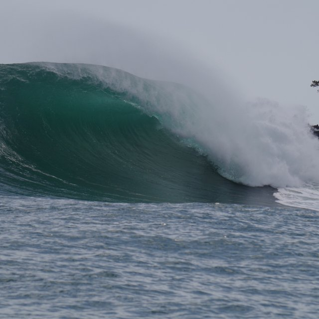 f5d9ded5d4 Bocas del Toro Surf Reports and Surfing