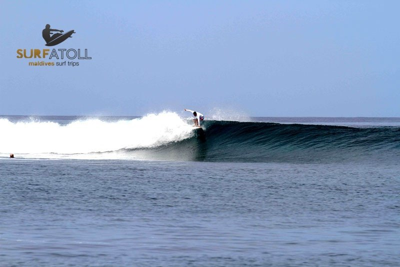 Surfatoll Madlives 's photo of Honky's