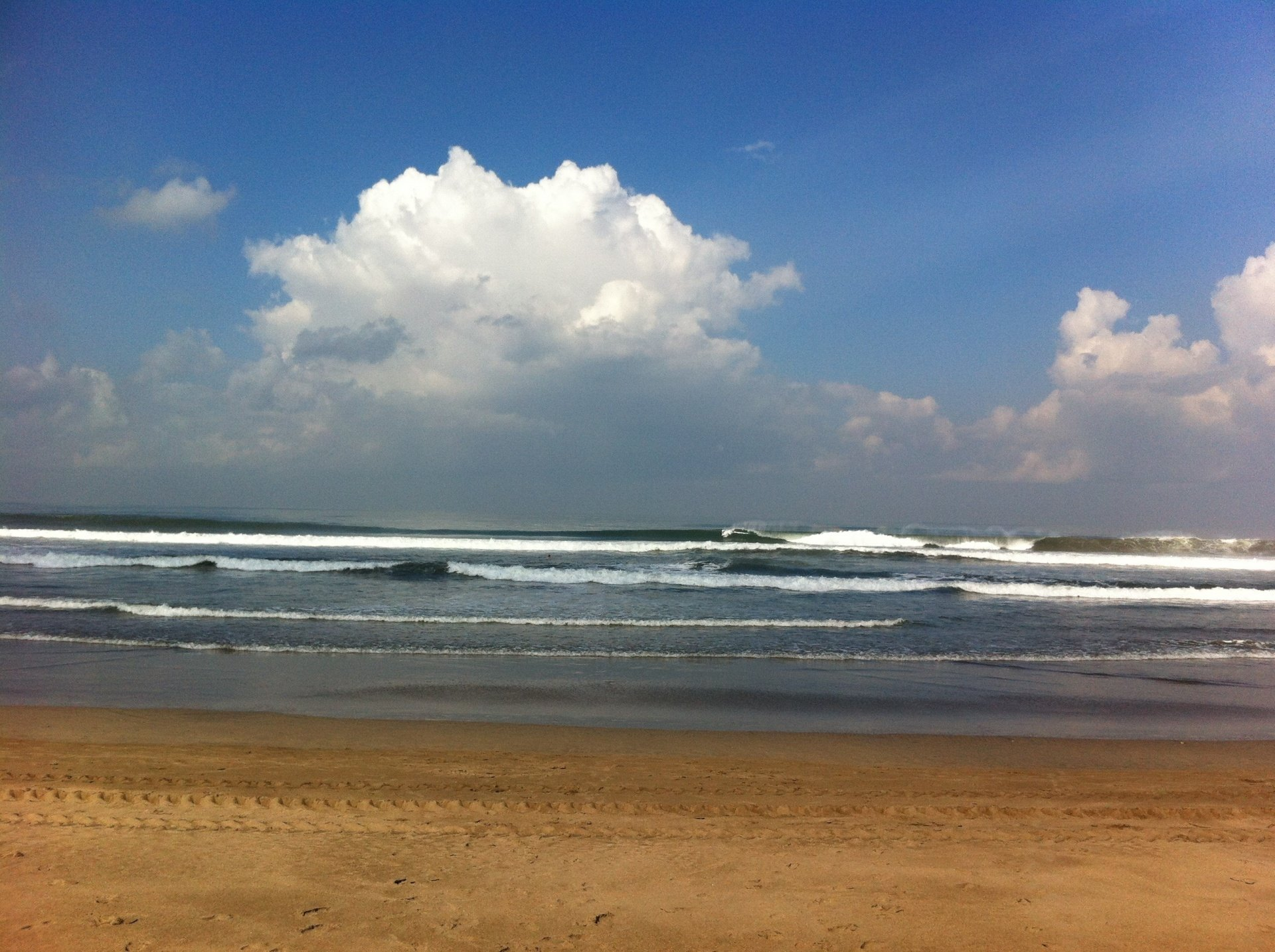 The Surfing Sumo's photo of Kuta