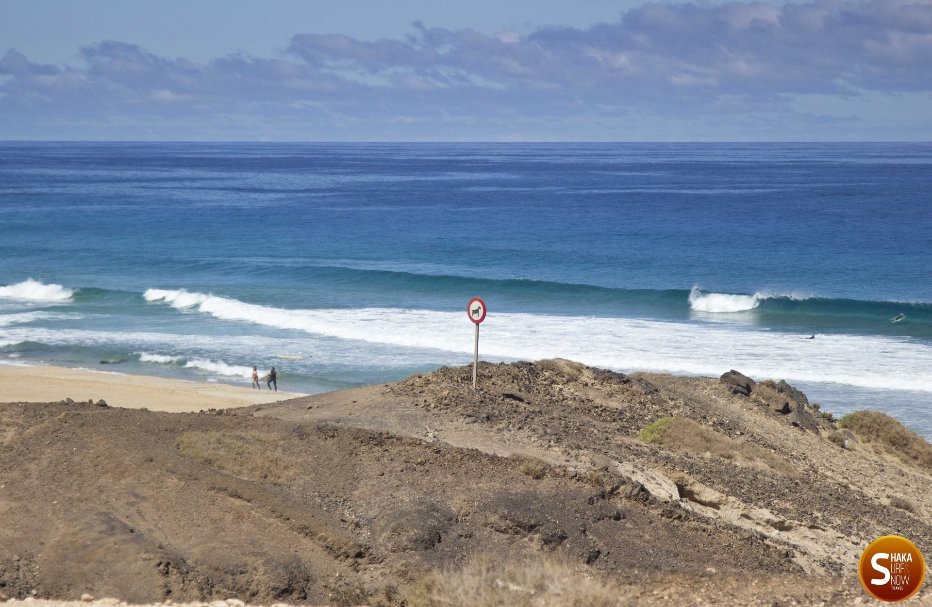 miso's photo of Cotillo