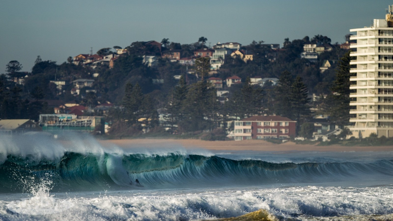 ChrisEyreWalker's photo of South Narrabeen