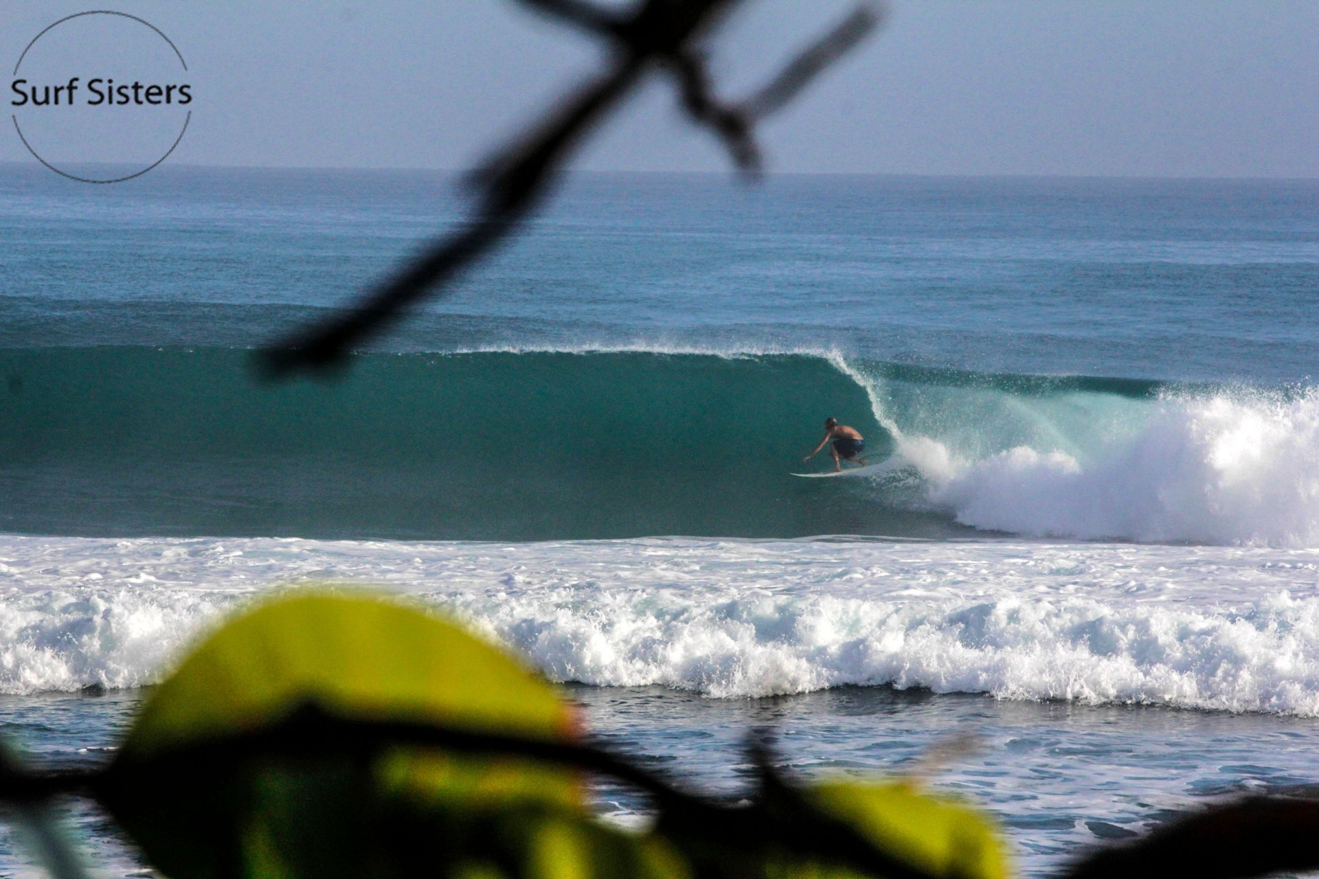 Surf Racer Board House's photo of Encuentro