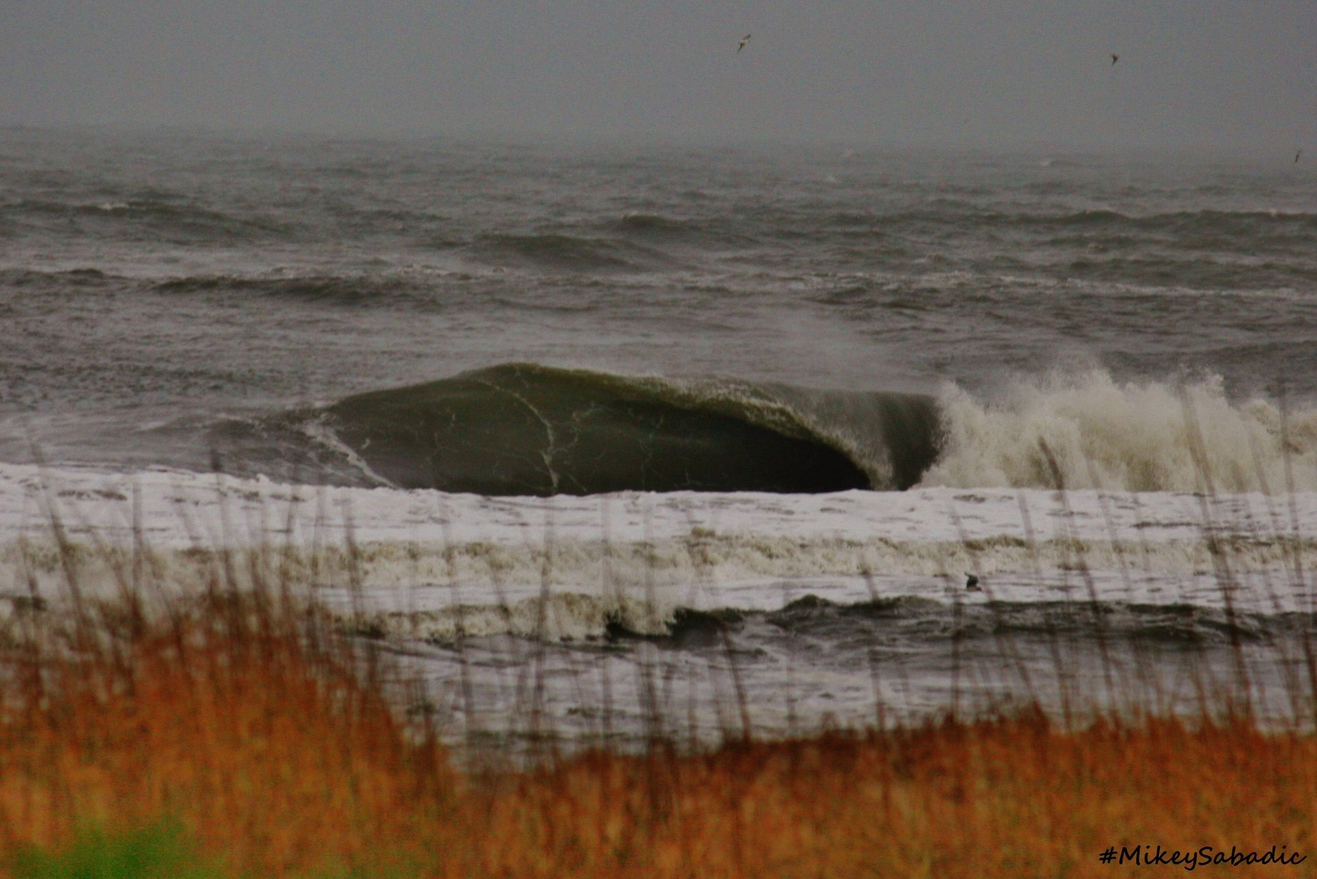 mikeysabadic's photo of Cape Hatteras