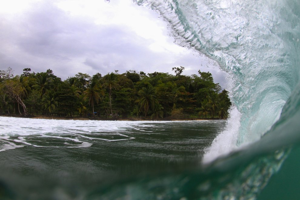Surfers Camp's photo of Paunch