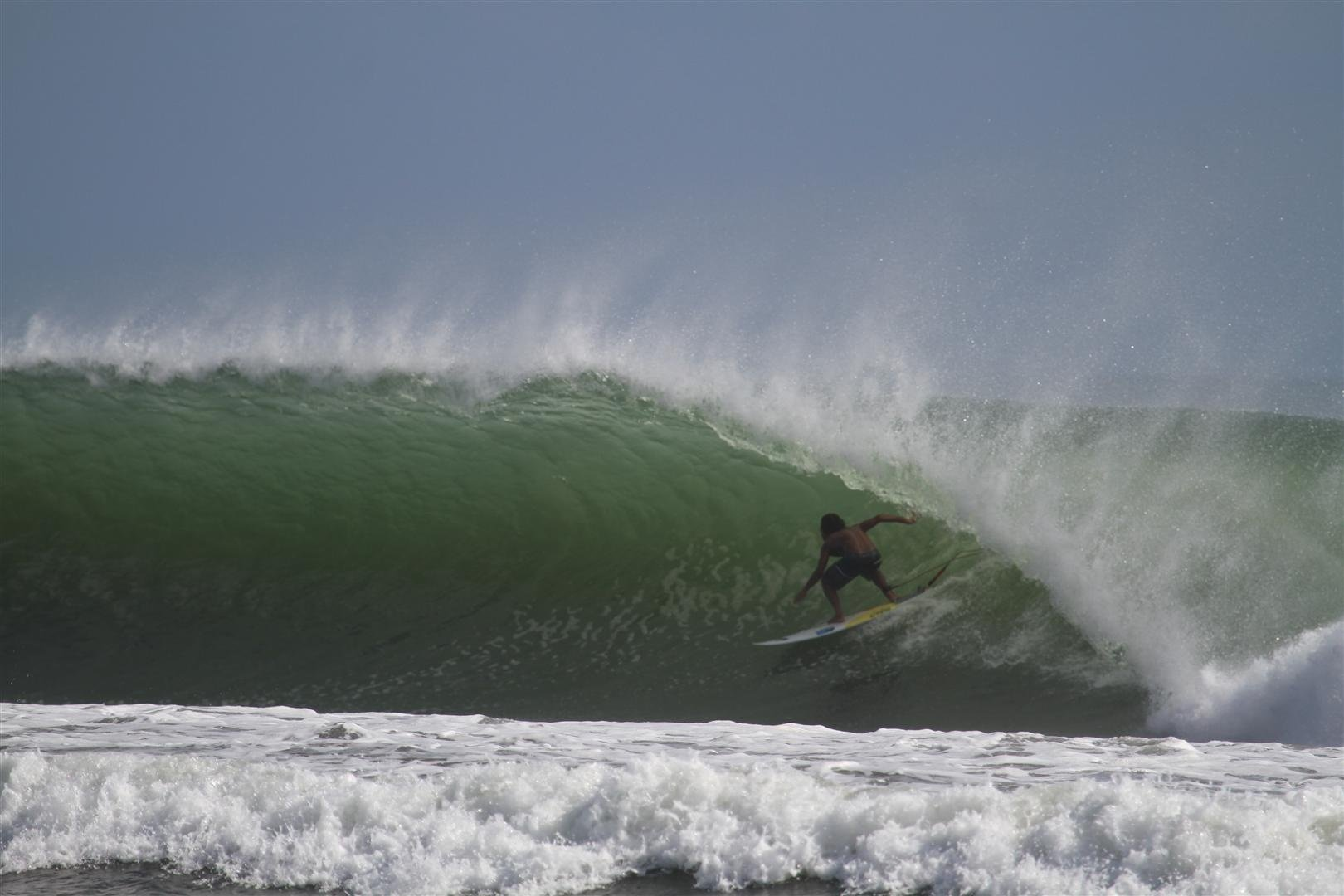 davidt's photo of Padma