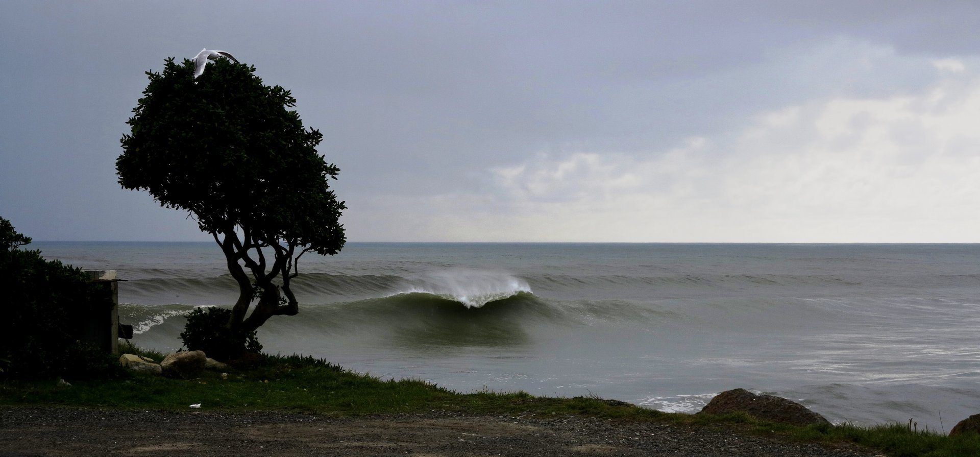 armstrong's photo of Greymouth