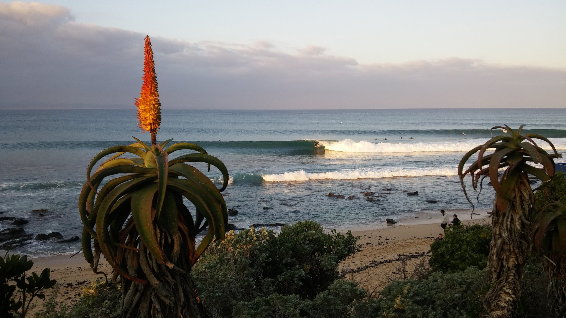Howard Briscoe's photo of Jeffreys Bay (J-Bay)