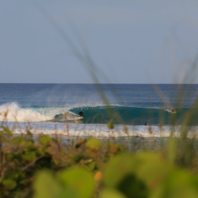 Delray Beach Surf Report Surf Forecast With Live Surf Webcams Magicseaweed