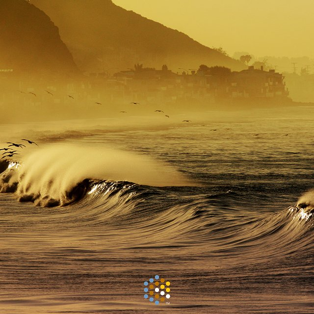 Malibu First Point Surf Report Surf Forecast And Live Surf Webcams