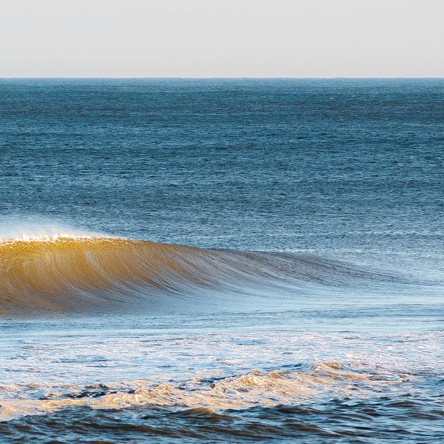 Island Beach State Park Surf Report, Surf Forecast and Live Surf Webcams