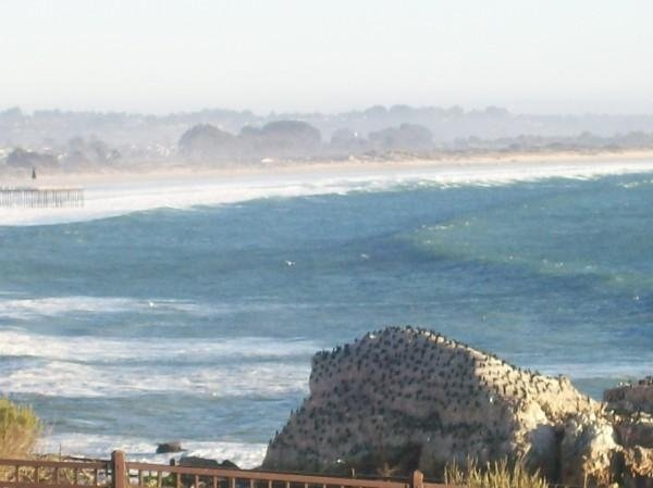 kai's photo of Oceano/Pismo