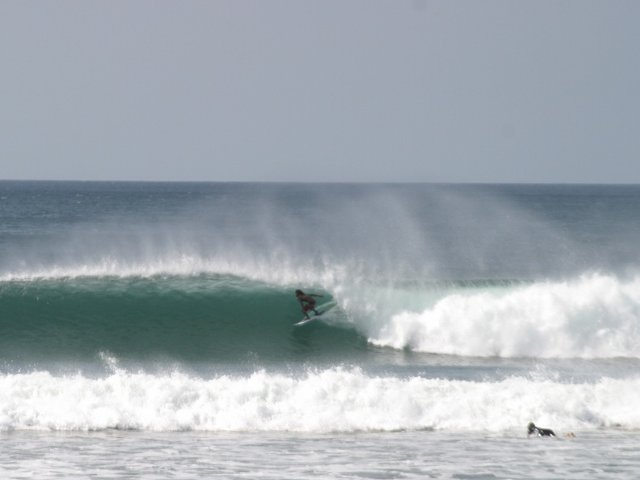 Travis Rolan's photo of Punta Palmar (San Carlos)