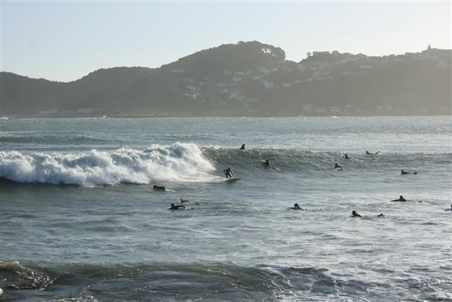 Matthias Heinrich's photo of Lyall Bay