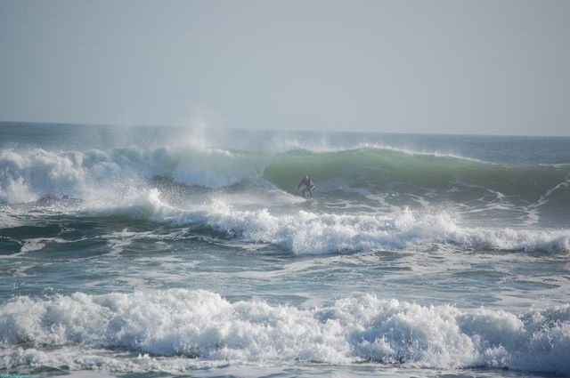paddlepaddle's photo of Ponce Inlet (New Smyrna)