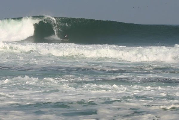 chopo dog's photo of La Puntilla (Antofagasta)