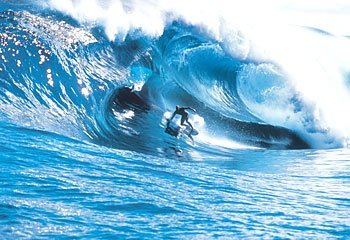 spongermoody's photo of Shipstern Bluff