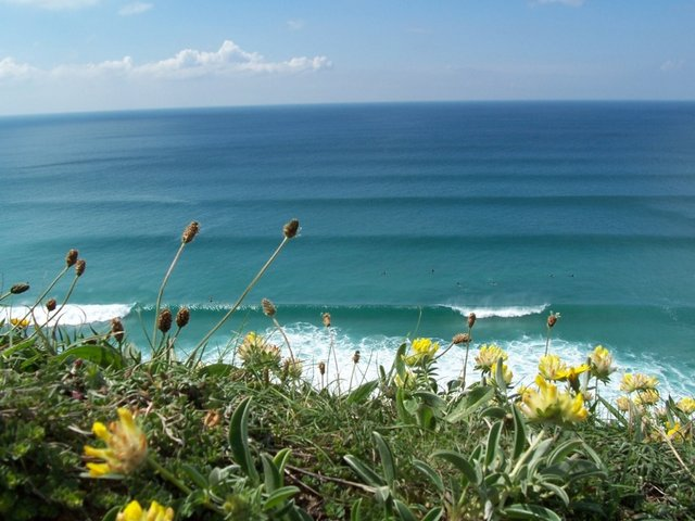 tubewizard's photo of Porthtowan