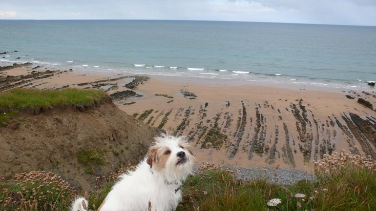 Hickory Nines's photo of Bude - Crooklets