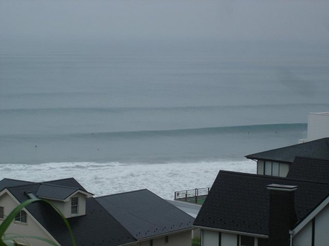 phdeluxe's photo of Shonan