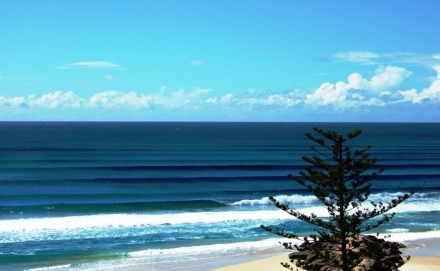 Sunshine Surf Safari's photo of Kirra