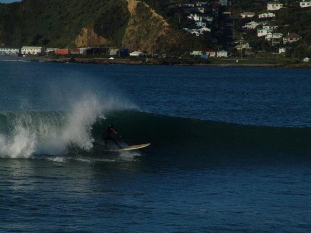 Andi Davenport's photo of Lyall Bay